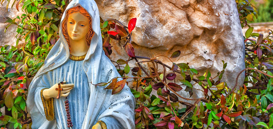 The Rosary and the Kingdom of God: Family Reflection Video