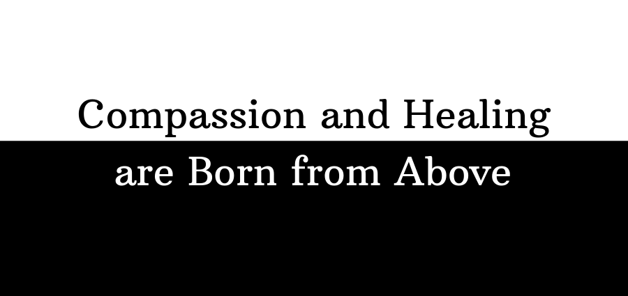 Compassion and Healing are Born from Above: Family Reflection Video
